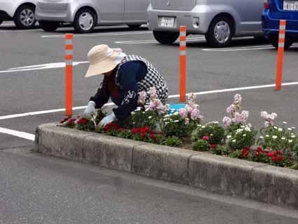 4.花の手入れご苦労様です.jpg