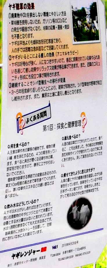 ヤギの除草の説明書き.jpg