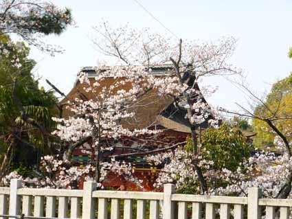 伊賀八幡宮 (4).jpg