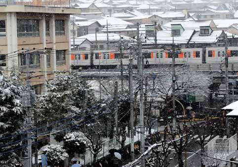 神奈川県川崎市の雪SH.jpg