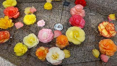 花の流れ.jpg